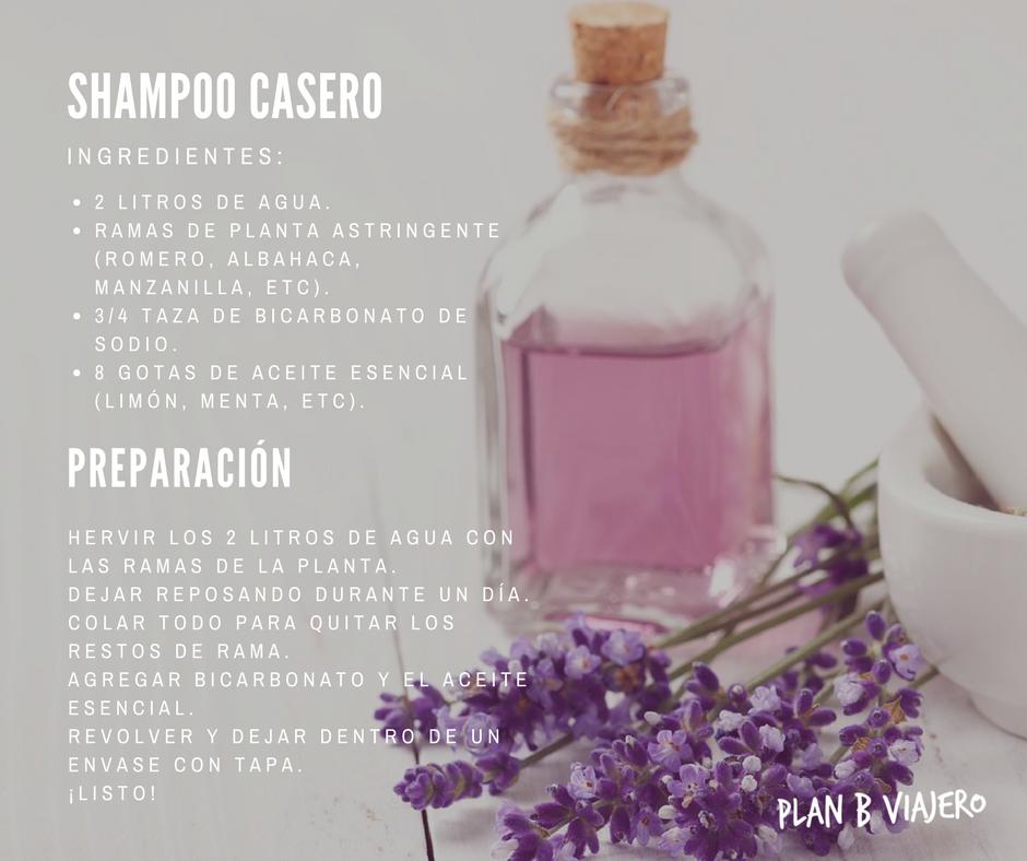 plan b viajero, opciones ecologicas para higiene personal, cosmetica ecologica , shampoo casero, shampoo ecologico, shampoo casero receta