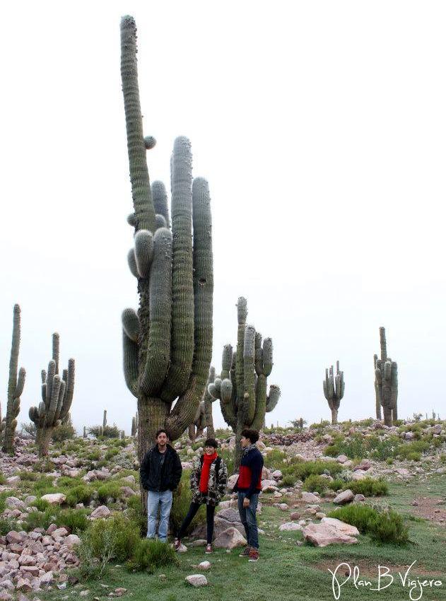 Plan B Viajero Humahuaca arte rupestre
