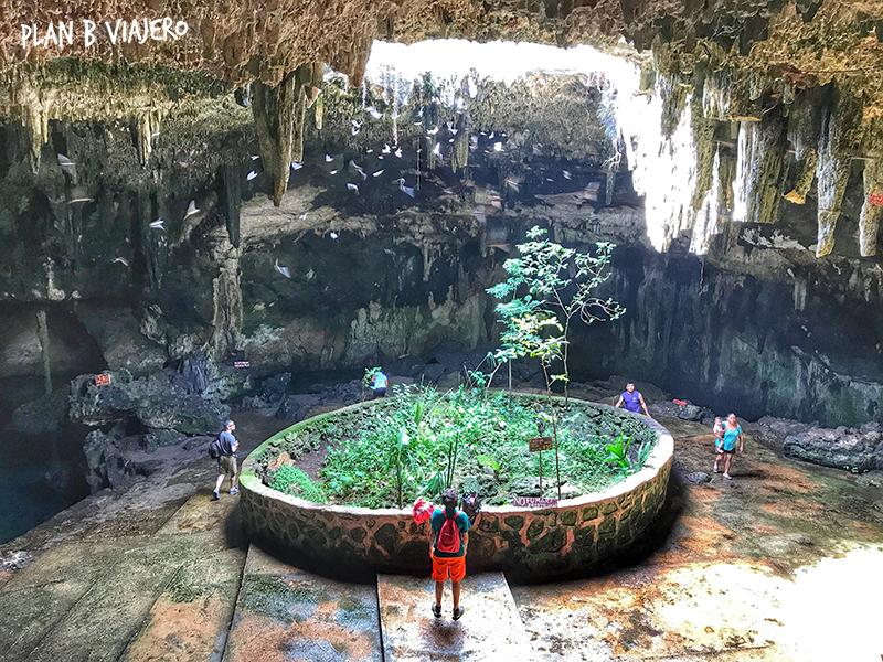 plan b viajero, lugares para conocer cerca de Merida, cenote tza ujun kat homun, cenotes yucatan