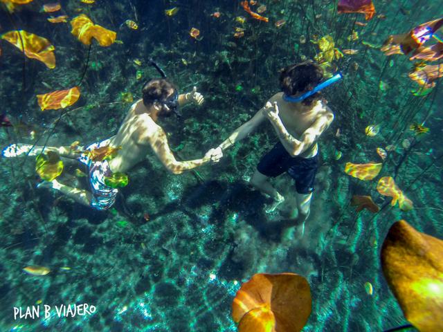 plan b viajero, mejores cenotes para visitar en Tulum, cenote carwash, cenote aktun ha